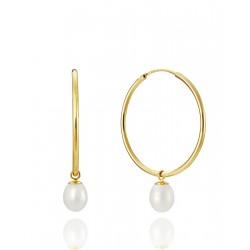 Pendientes Viceroy jewels con aro dorado y perla 1603E000-66